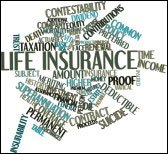 level term life insurance photo